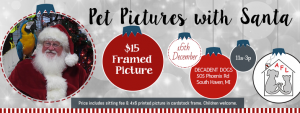 Pet Pictures with Santa @ Decadent Dogs | South Haven | Michigan | United States